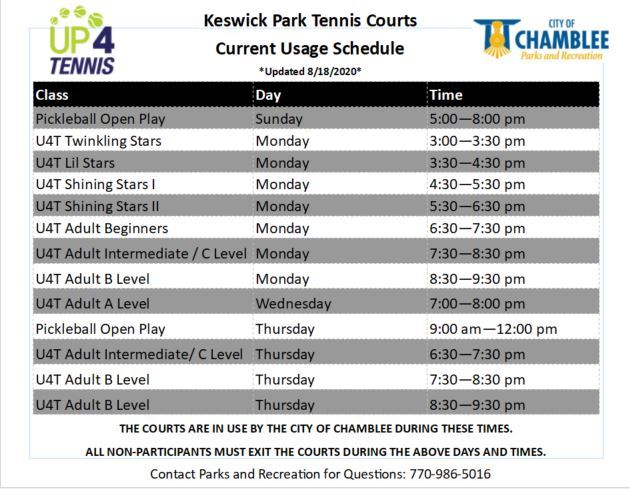 Keswick Park tennis court usage 8-19-2020