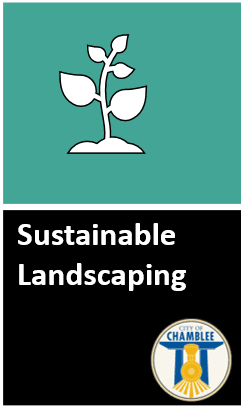 Click to read full Sustainable Landscaping Policy. Opens in new window